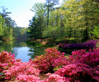 Callaway Gardens, Pine Mountain, Georgia, in April 2008